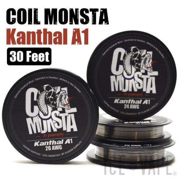 画像1: 23g & 25g新発売!【RBA DIY】 COIL MONSTA / Kanthal A1 (1)